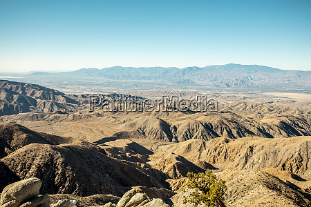 usa california los angeles joshua tree