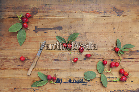 roseships and kitchen knife on wood