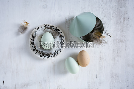 still life with eggs and feathers