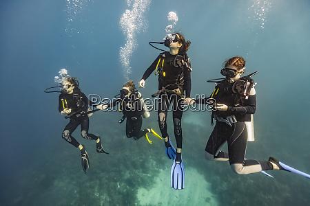 scuba divers in roatan marine park