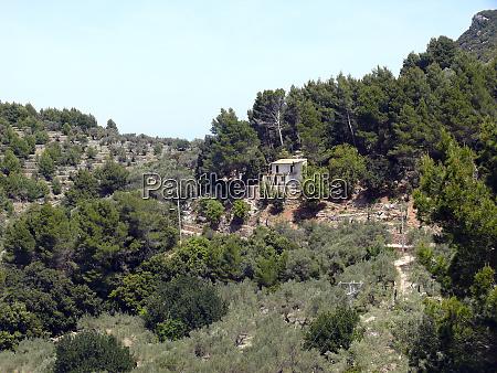 landscape of the serra de tramuntana