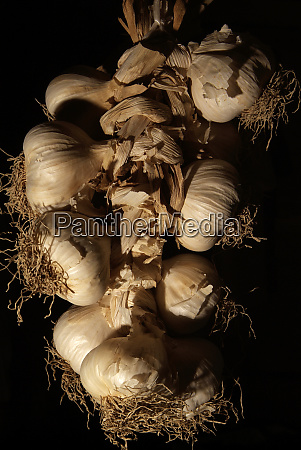 garlic braid handing from the ceiling