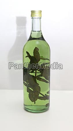 green herbs brandy