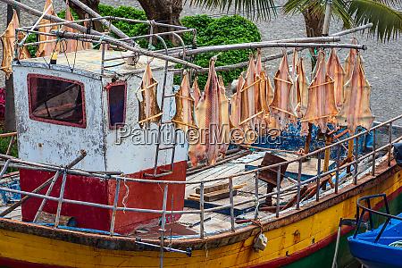 fishing boat in camara de lobos