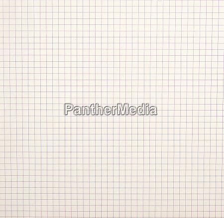 sheet of school notebook in a