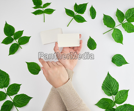 female hand holding a stack of