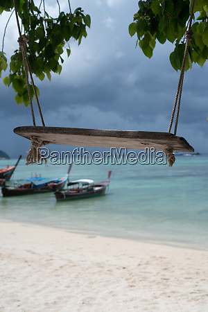 swing hang from tree over tropical
