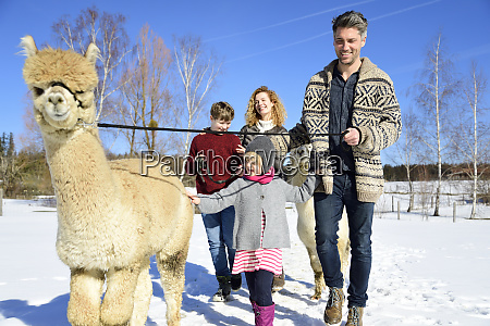 family walking with alpaca on a