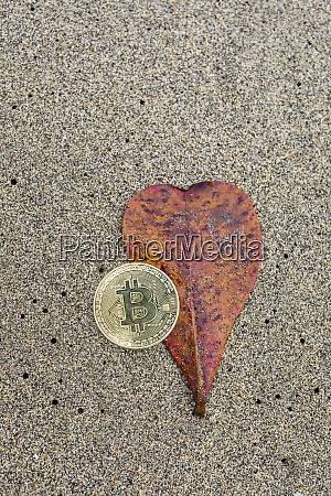 bitcoin on a sandy beach with