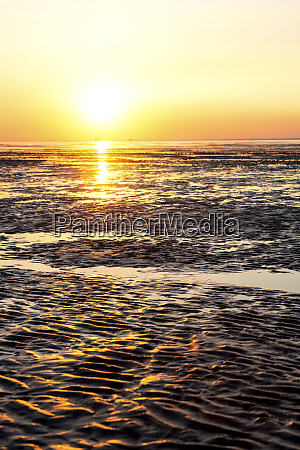 germany north sea cuxhaven mudflat beach