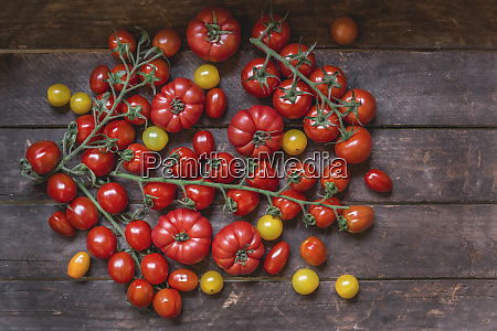 various sorts of tomatoes on wood