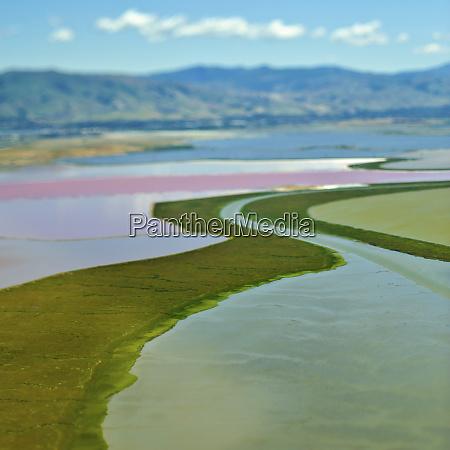 cultivated floodplains