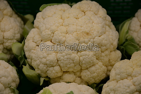 cauliflower at the weekly market in