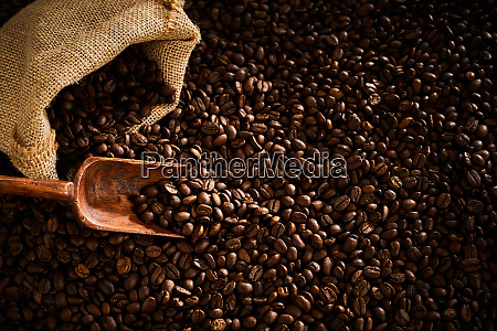 fresh roasted coffee beans scoop and
