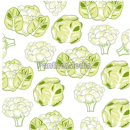 vector illustration of the pattern of
