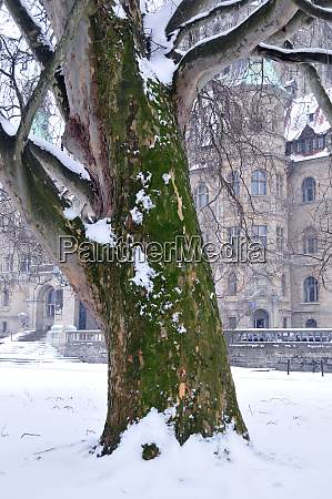 winter in the maschpark with new