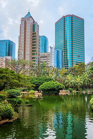 pond and flamingos at kowloon park