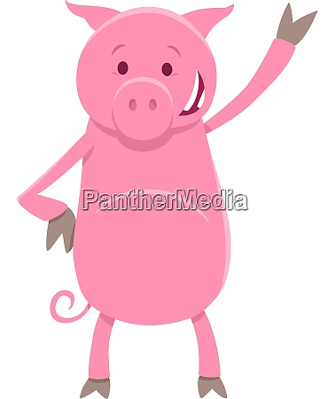 funny pig animal character cartoon illustration