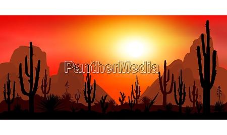 stony desert with cacti 1