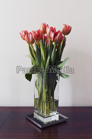 red tulip bouquet in vase