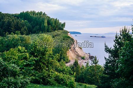 cliff with birch woodland