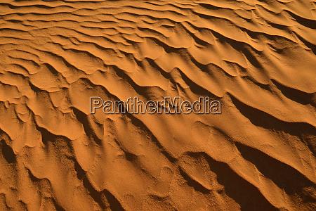 africa algeria sahara ripple marks texture
