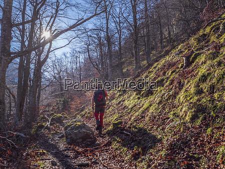 spain asturia cantabrian mountains senior man