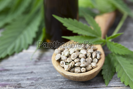 cannabis seeds in spoon