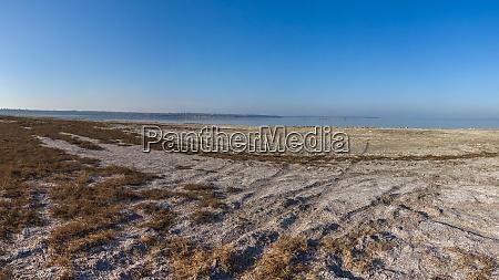 deserted beach in koblevo ukraine