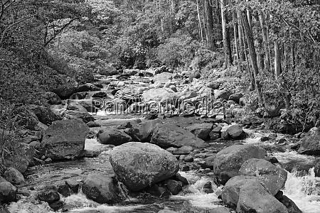 small stream in volcan baru national