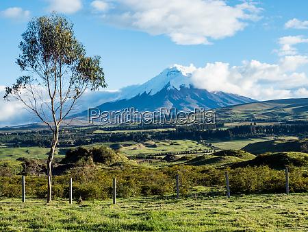 green farmland and cotopaxi volcano andes
