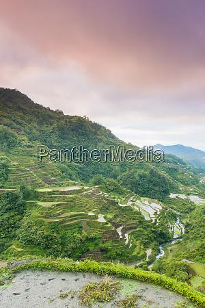 rice terraces banaue unesco world heritage