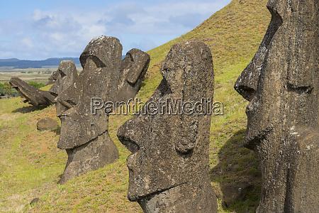 moai heads of easter island rapa
