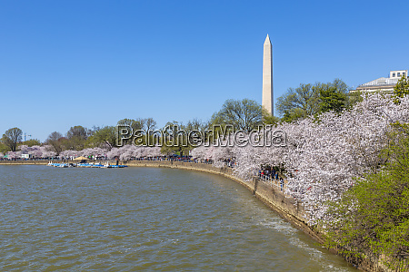 view of the washington monument and
