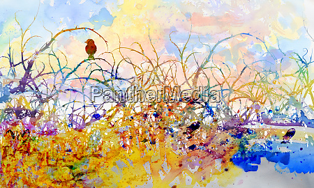 young bird in thorny scrub and