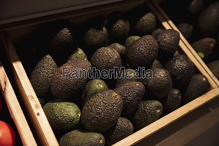 abundance of fresh avocados
