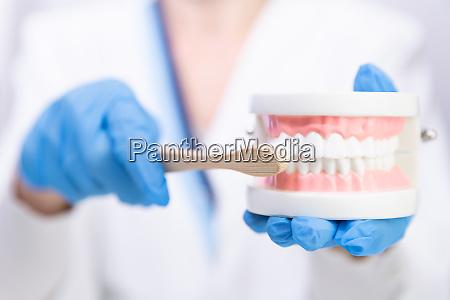 female dentist explain about brushing teeth