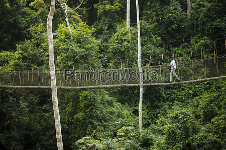 man walking on canopy walkway through