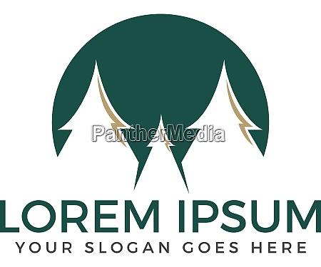 spruce trees vector logo design