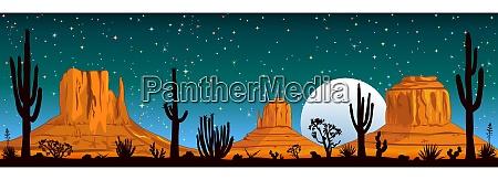 starry night over the arizona desert