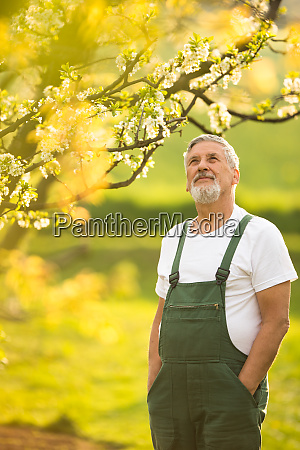 portrait of senior man gardening taking