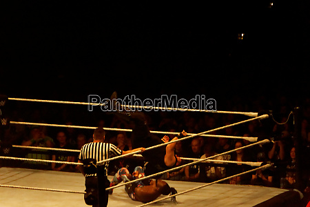 the, wwe, live, event,