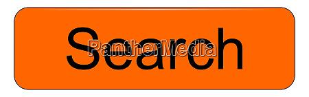 orange search button on white backround