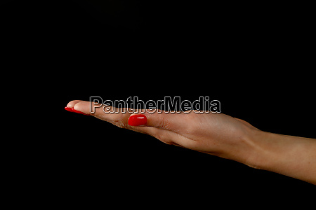 woman hand palm presenting something over