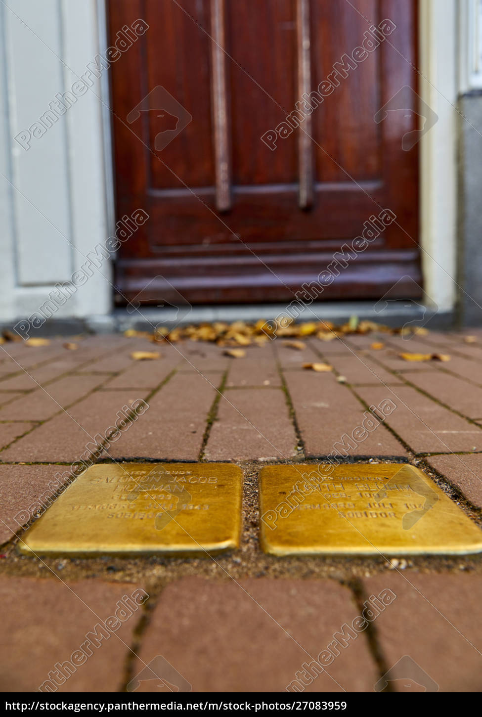 stumbling, stones, (stolpersteine), , holocaust, memorial, placed - 27083959