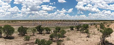 the landscape of khaudum national park