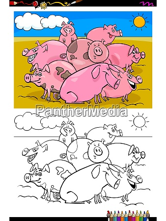 pigs farm animal characters group color