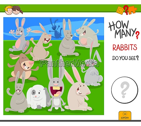 how many rabbits educational task