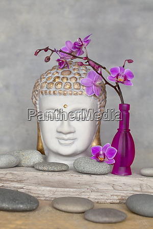 buddha head and pink orchid zen