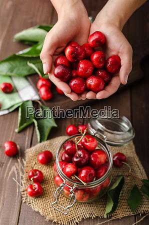 freshly picked cherries